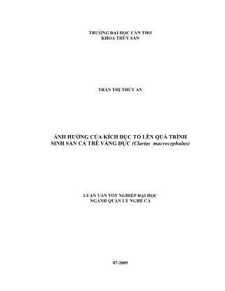 Luận văn Ảnh hưởng của kích dục tố lên quá trình sinh sản cá trê vàng đực (Clarias Macrocephalus)