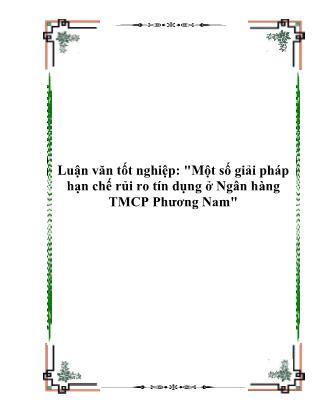 Luận văn Một số giải pháp hạn chế rủi ro tín dụng ở Ngân hàng TMCP Phương Nam